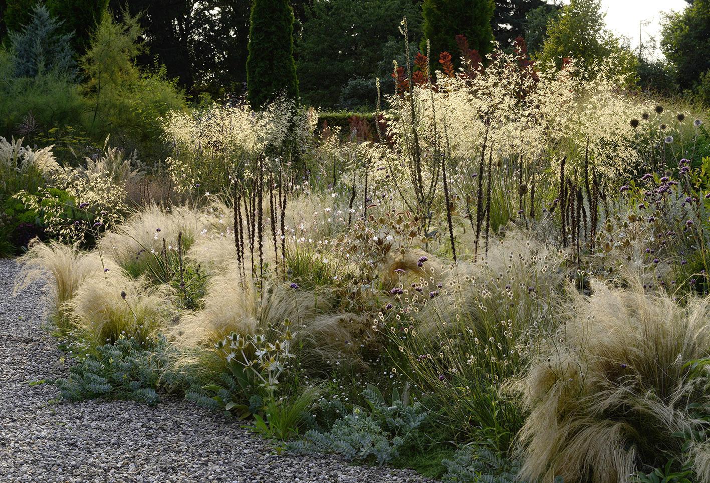 Garten peter janke gartenkonzepte for Peter janke design mit pflanzen
