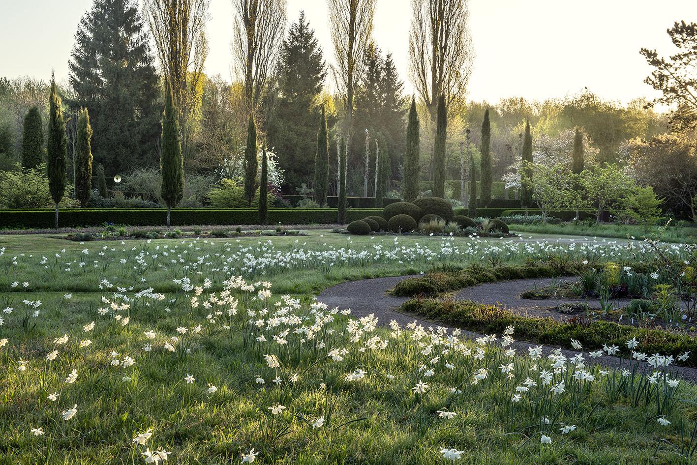 Garten : Peter Janke D