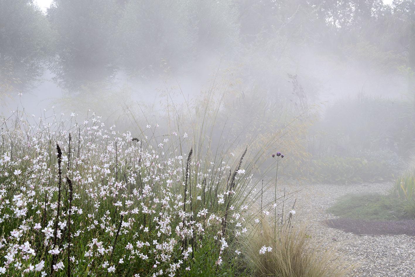 Garten: Peter Janke D