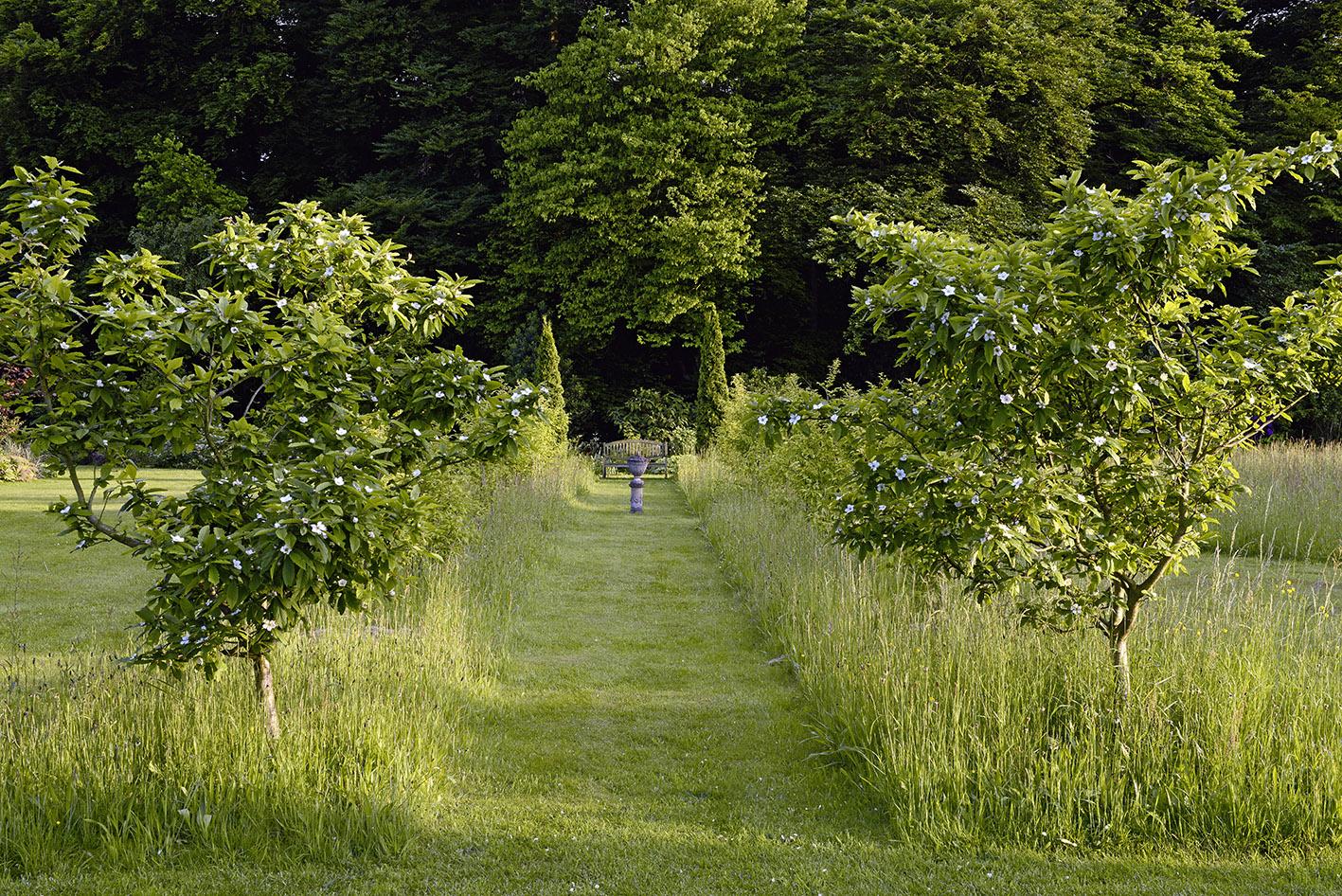 Garten : Petr Janke Deutschland