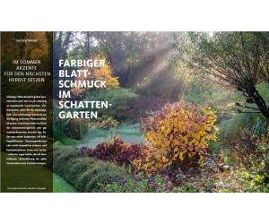 Farbiger Blattschmuck im Schattengarten