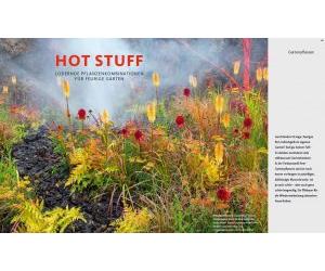 HOT STUFF Lodernde Pflanzenkombinationen für feurige Gärten