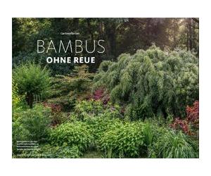 Bambus ohne Reue