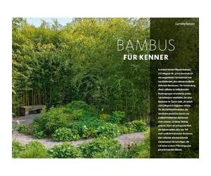 Bambus für Kenner