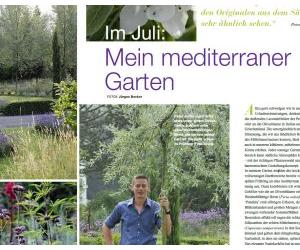 Mein mediterraner Garten